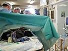 O Kambu během porodu pečoval rozsáhlý tým odborníků složený zchovatelů,