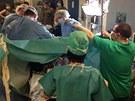 Gorila Kamba při komplikovaném porodu bojuje o život (23. února 2013)