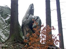 Skalisko Med�vka