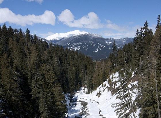 Výhled z jedné z platforem na moje pracoviště - údolí, nad kterým jsem skoro