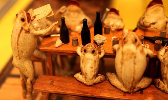 Bizarní soubor 108 vycpaných žab vytvořil v letech 1853 až 1860 penzionovaný