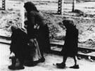 Fotograf zastihl ženu s dětmi na cestě do plynové komory. V Osvětimi-Březince