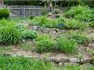 Klidn� za�n�te s permakulturn�m p�stov�n�m nejprve na men��m kousku zahrady,