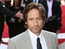 David Duchovny na premiéře filmu Akta X: Chci uvěřit (2008)