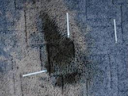 Na koberci v bytě oběti byla skvrna od krve.