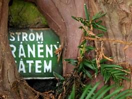 Tis si svérázně poradil i s informační tabulkou chráněného stromu.