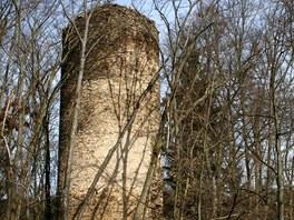 Hlavní dominanta Chřenovic, hrad během léta ale zcela zahaluje okolní porost.