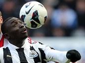 RYCHLE NA ZEM. Papiss Cissé z Newcastlu (vpředu) si zpracovává míč v duelu anglické ligy proti Stoke.