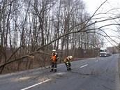 Strom, který vyvrátil silný vítr, blokoval v pátek silnici z Kroměříže na