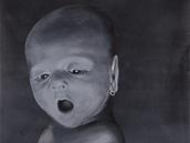Petr Nikl, Enfant terrible, 2011