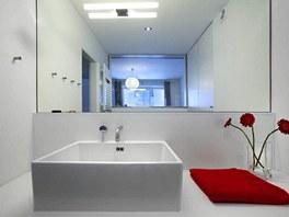 Koupelna 6: velké zrcadlo místnost opticky násobí.          .