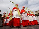 Liturgie Květné neděle připomíná Kristův vjezd do Jeruzaléma. Lidé ho tehdy...