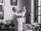 Omylem géniem: Penicilin, Fleming při práci ve své laboratoři.