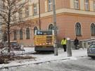 Autobus cestou parkem porazil semafor, lavičku, strom a keře.