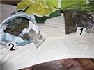 Policisté našli u bratrů drogy v hodnotě více než 250 tisíc korun.