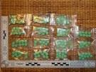 Bratři měli v bytě uschováno přes sto tablet extáze.
