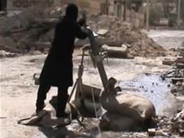 Syrský povstalec nabíjí minomet na předměstí Damašku (25. března 2013)