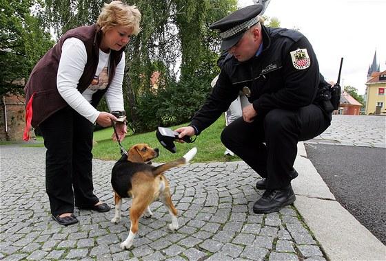 Strážník zjišťuje, zda je pes označen čipem. (ilustrační foto)