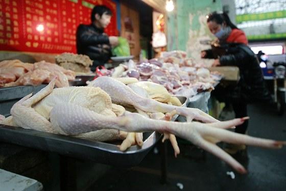 Virus H7N9 za��n� vyvol�vat obavy, aby se neza�al chovat jako jeho zn�m�j��...