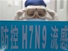Na nový typ ptačí chřipky zemřelo v Číně už 22 lidí.