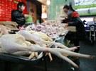 Virus H7N9 začíná vyvolávat obavy, aby se nezačal chovat jako jeho známější...