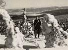 Orlické hory ze sbírky Petra Rýgra