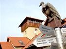 Are�l farmy Bolka Pol�vky v Ol�anech na Vy�kovsku
