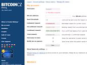 Takhle mohl vypadat i váš účet, kdybyste bitcoiny začali těžit včas (ilustrace).