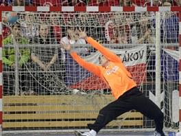 Brankář Petr Štochl v utkání proti Německu