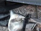 Součásti výbušného mechanismu, které policie našla na místě explozí v Bostonu