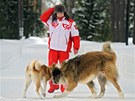 Vladimir Putin ven�� sv� psy v zasn�en�m parku v Moskv�. (10. dubna 2013)