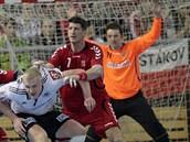 Brankář Petr Štochl v utkání proti Německu za českou obranou, kde úřadují David