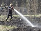 Shořelo asi pět hektarů lesa