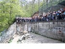 Na křest dvou medvíďat dorazily tisíce lidí.