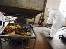 Na nákazu ptačí chřipkou H7N9 v Číně zemřelo už 22 lidí (22. dubna)