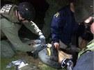 Boston�t� policist� o�et�uj� zran�n�ho D�ochara Carnajeva pot�, co byl zadr�en