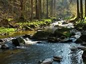 Zlatý potok se hluboce zařezává do Pekelského údolí a době vydatných dešťů a