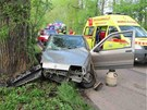 Auto mezi obcemi Smiřice a Černožice narazilo do stromu u silnice.