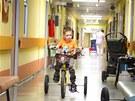Pětiletý Marek Kún v léčebně Vesna v Janských Lázních.