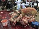 Jste hamižní, jako prasata, křičel dav před keňským parlamentem na politiky,