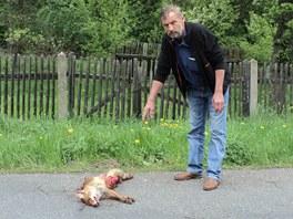 Vojtěch Rozehnal ukazuje na lišku přejetou nedaleko jeho zahrady.
