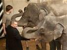 Nechyběl ani u otevření nového pavilonu slonů v pražské zoo za více než půl...