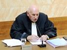 Předseda soudu Pavel Rychetský (vlevo) a soudce zpravodaj Stanislav Balík při