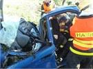Osmn�ctilet� �idi� havaroval na Opavsku do stromu (20. kv�tna 2013).