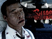 Shadow Warrior z roku 2013