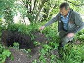 Bobří rodina vyhrabala u Březolupského rybníka ohromné díry.