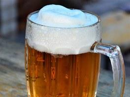 V n�kter�ch pivech se na�ly �kodliv� mykotoxiny. Ilustra�n� foto.
