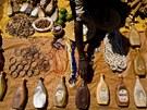 Z orgánů albínů se údajně připravují i lektvary, které pak obchodníci s polu s