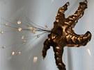 Na výstavě uvidíte běžný piercing, ale třeba i ozdoby přes oko či do hrudníku.