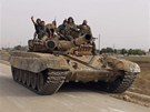 Asadovy jednotky v boj�ch o m�sto Kusajr (2. �ervna 2013)